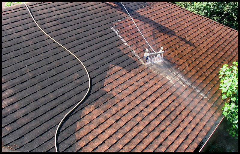 5 Reasons it's important to keep your roof clean